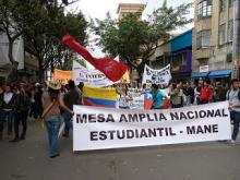 mane colombia